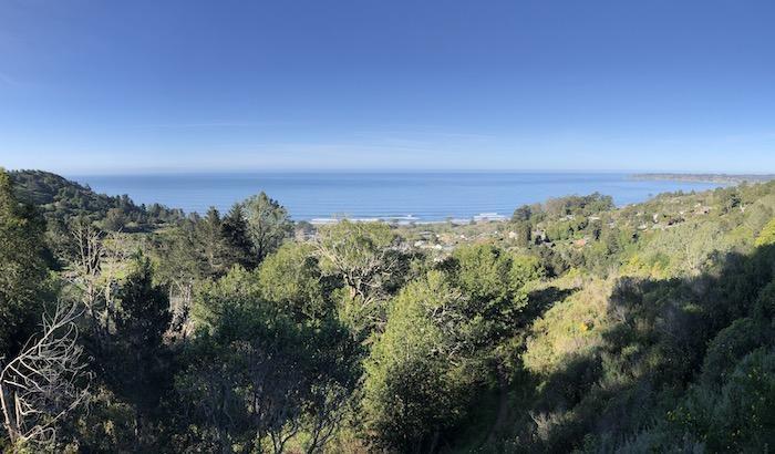 Bay Area Hikes: View from Matt Davis Trail
