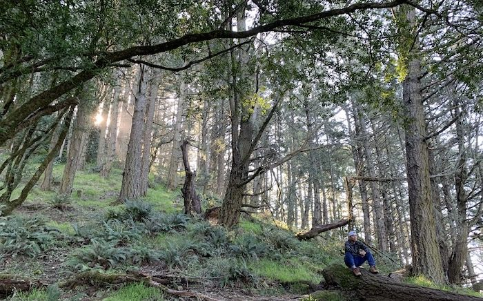 Why Meditate: Mike at Mt. Tam